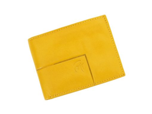 Gai Mattiolo Man Leather Wallet Brown-6244