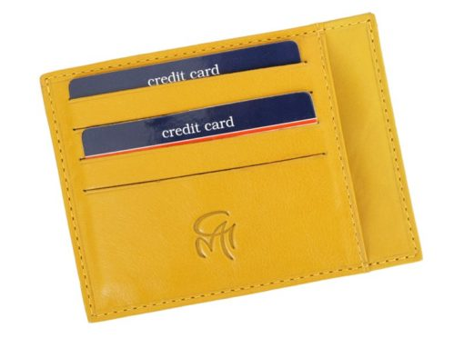 Gai Mattiolo Credit Card Holder Black-4276