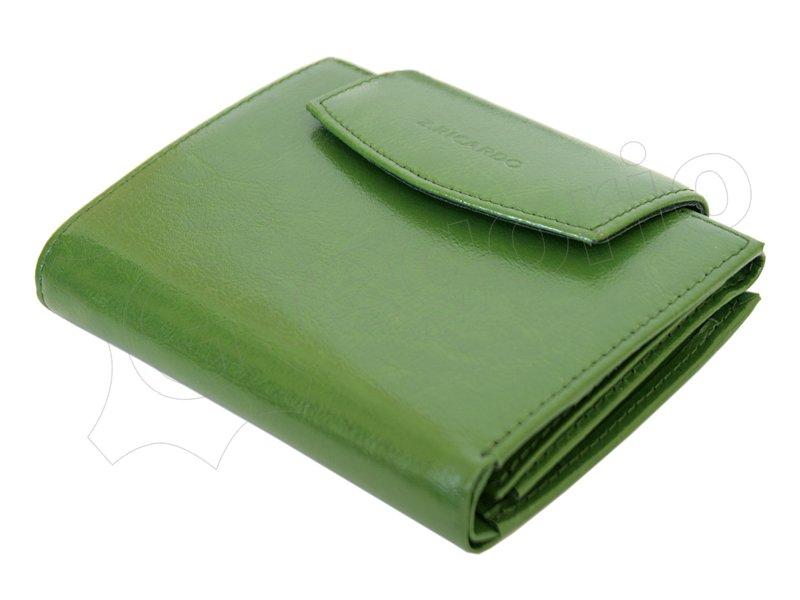 Z. Ricardo Woman Leather Wallet Green-4578