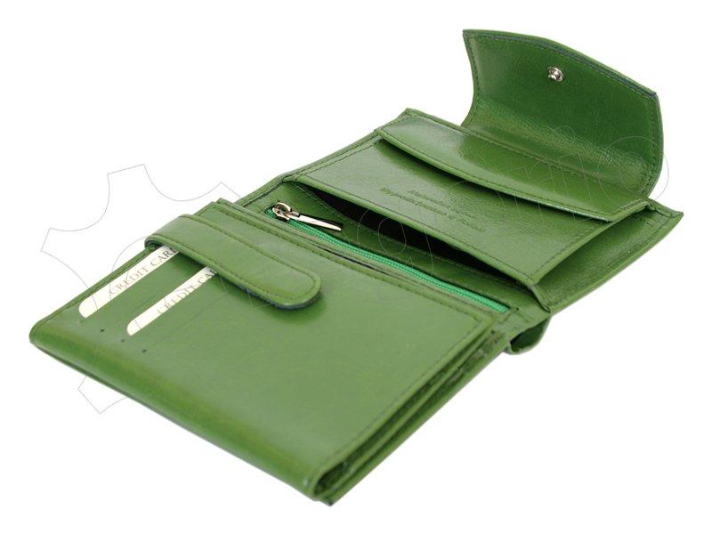 Z. Ricardo Woman Leather Wallet Green-4582