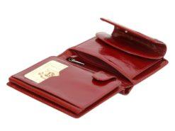 Giovani Woman Leather Wallet Swarovski Line Red-4384